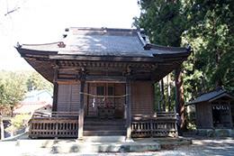 190406大附日枝神社の大欅④