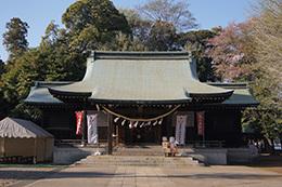 190416峯ヶ丘八幡神社銀杏⑧