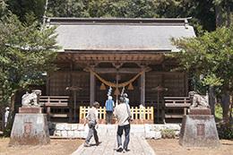 190420荒橿神社のケヤキ⑤