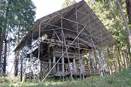 190420荒橿神社のケヤキ⑥