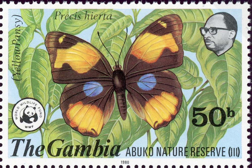 Gambia:1980-2
