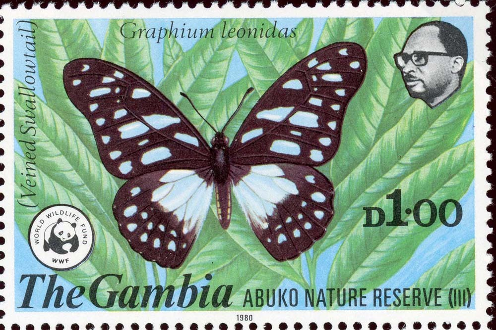 Gambia:1980-3