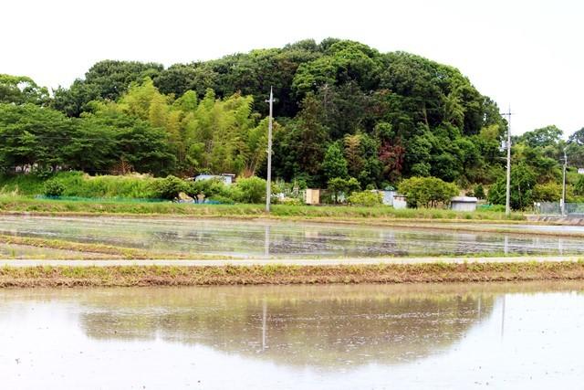 水はり田1