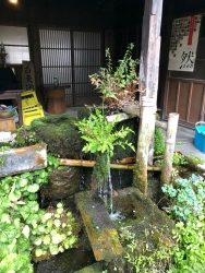 190412_19女学校の泉