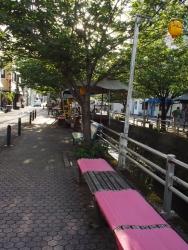 190523_15-2川縁り