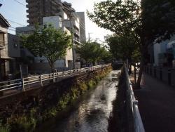190527_10栄橋遠景