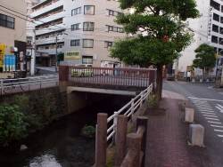 190607_04有楽橋