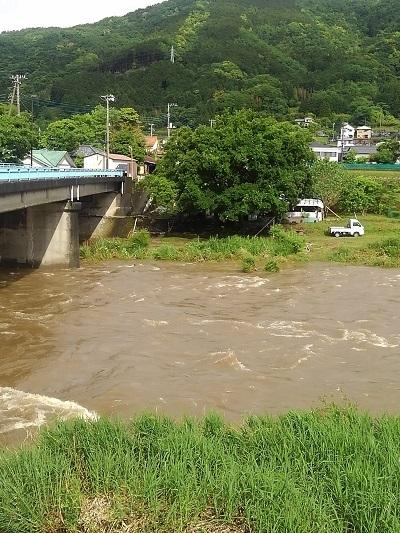 濁りの狩野川