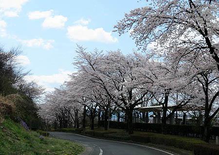 0411箕郷公園