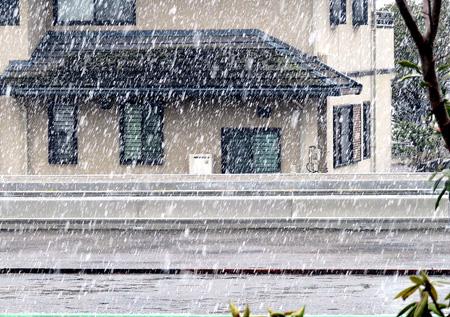0412四月の雪