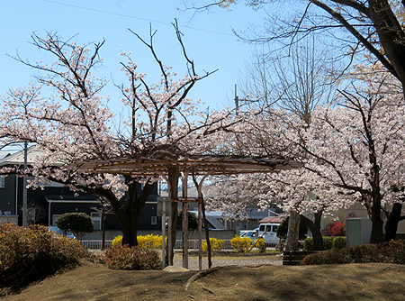 0414六郷公園