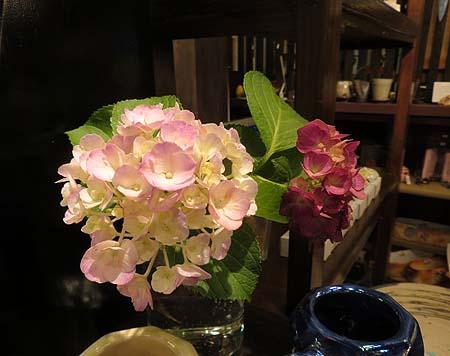 0618紫陽花