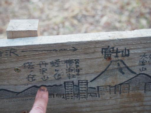 20190324・多磨霊園2-13