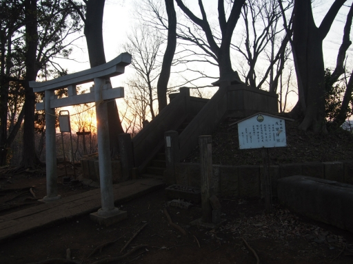 20190324・多磨霊園空15・浅間山鳥居・大