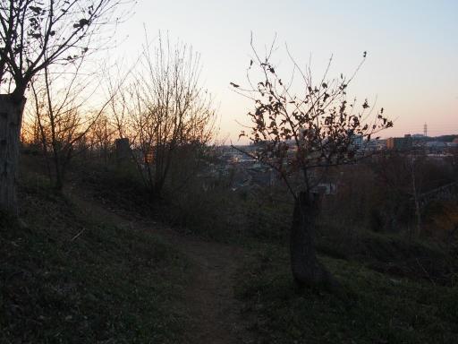 20190324・多磨霊園空13・浅間山へ