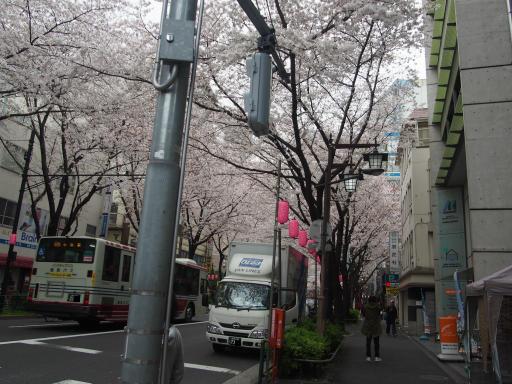 20190330・東京さ14