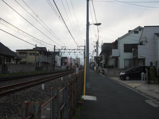 20190330・東京さ24