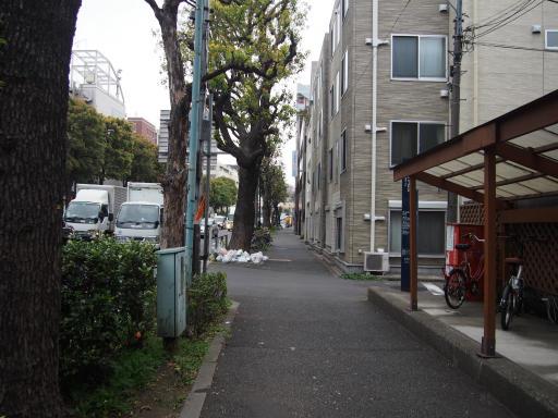 20190330・東京さ19