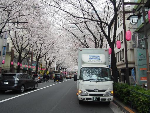 20190330・東京さ空11