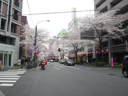 20190330・東京さ空10・中野通桜まつり