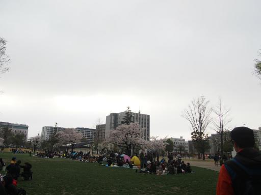 20190330・東京さ空18・四季の森公園