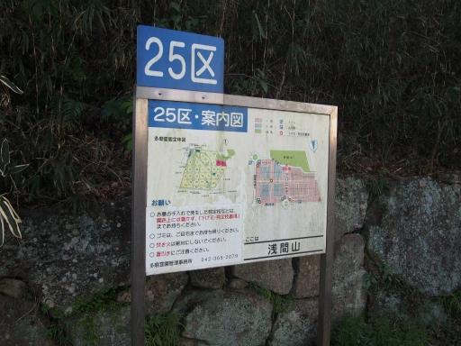 20190324・多磨霊園ネオン3