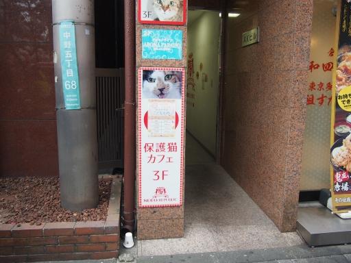 20190330・東京さにゃーにゃー2・中野