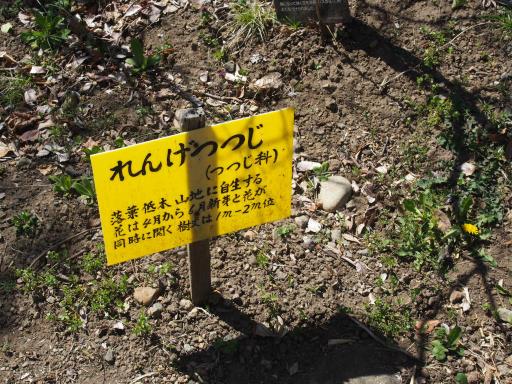 20190415・長野旅行7-06