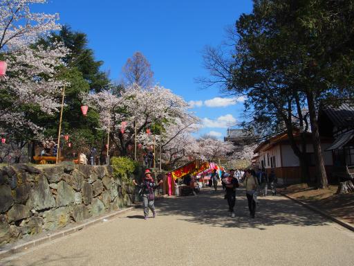 20190415・長野旅行7-17