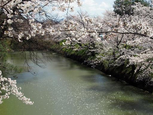 20190415・長野旅行7-24