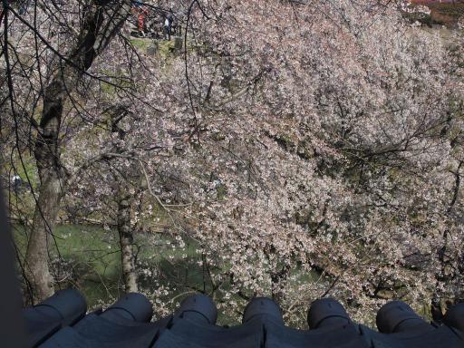 20190415・長野旅行8-13