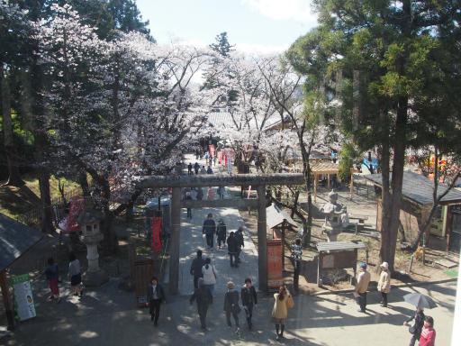 20190415・長野旅行8-19