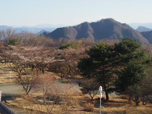 20190415・長野旅行9-12