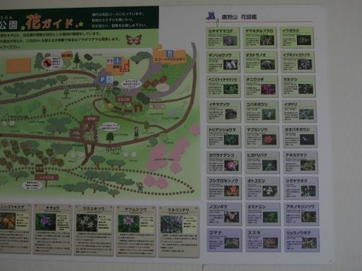 20190415・長野旅行植物鷹狩山資料6・大