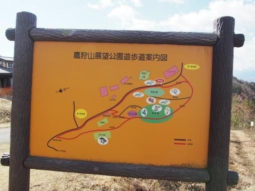 20190415・長野旅行植物鷹狩山資料2・大