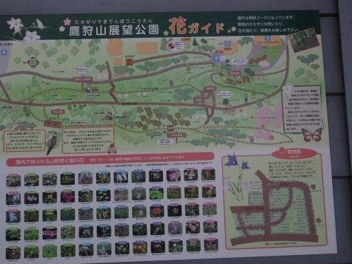 20190415・長野旅行植物鷹狩山資料1・大