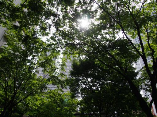 20190518・新宿中野散歩1-03