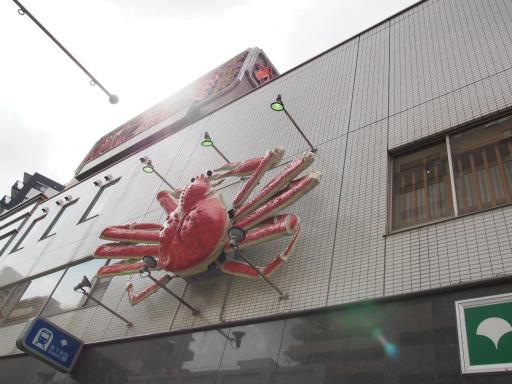 20190518・新宿中野散歩1-08