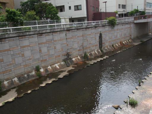 20190518・新宿中野散歩空07・神田川写りこみ