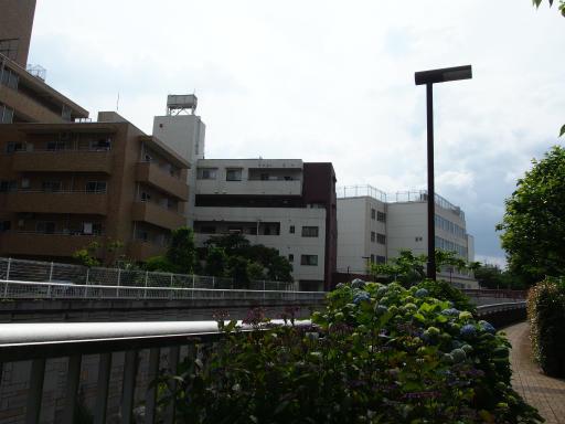20190518・新宿中野散歩空08・神田川沿い