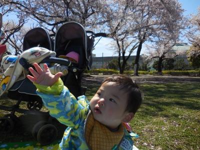保谷園ブログ DSCN8937