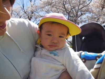 保谷園ブログ DSCN8930