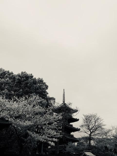 動物園の五重塔