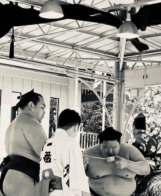 靖国神社奉納相撲19
