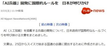 news「AI兵器」開発に国際的ルールを 日本が呼びかけ