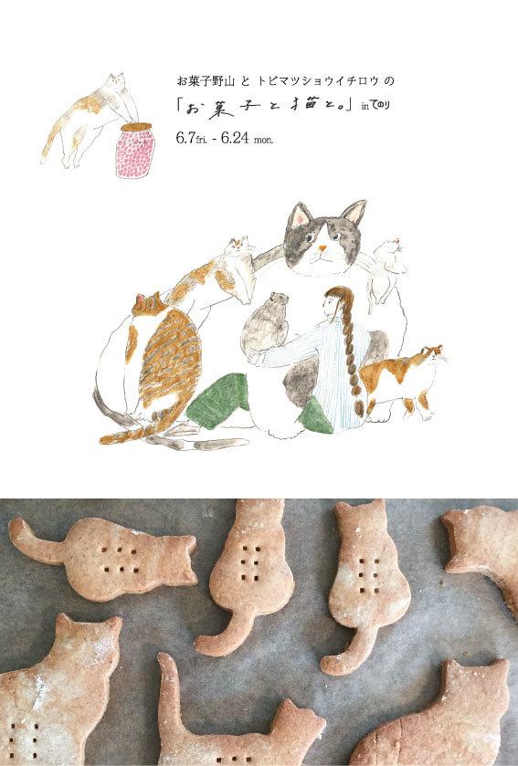 お菓子と猫と。