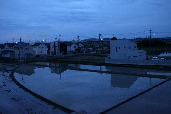IMG_6693水田