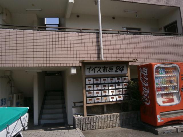 P3260035.jpg