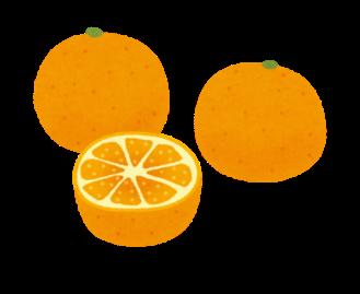 みかん オレンジ