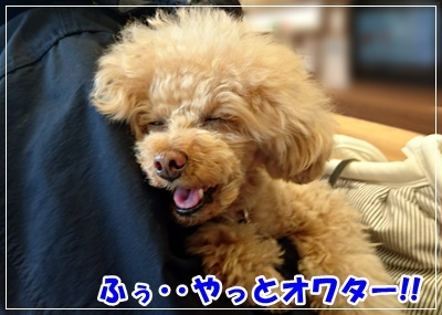 DSC_6028.jpg
